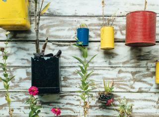 Ekologiczne rozwiązanie doniczek na kwiatki