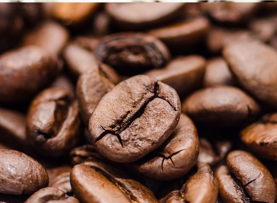 ziarna kawy robusty